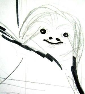Рисуем голову ленивца