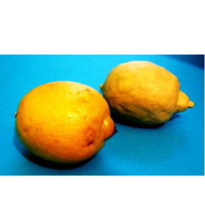 Лепка Лимон