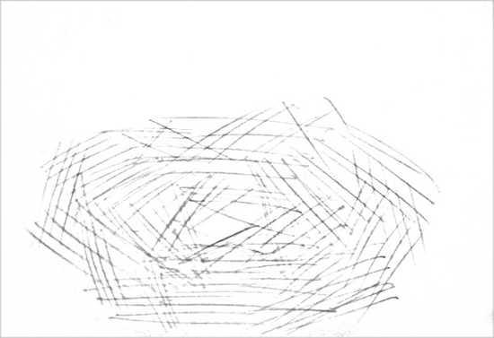 Рисунок Гнездо