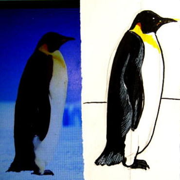 Рисунок Пингвин