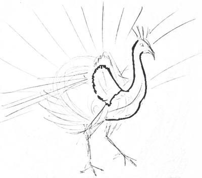 Рисуем птицу павлина