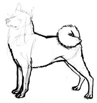 Урок рисования лайки