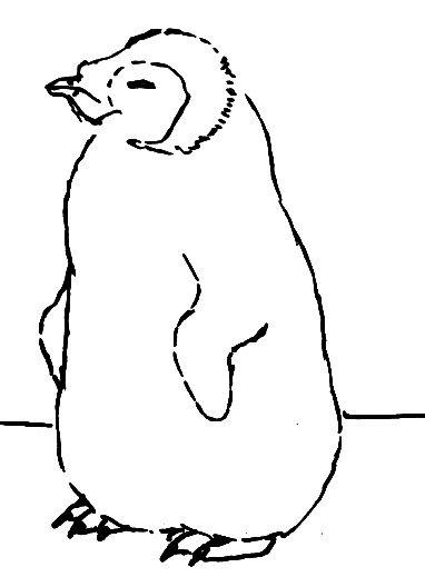 Раскраска Пингвинёнок