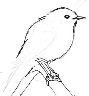 Урок рисования малиновки