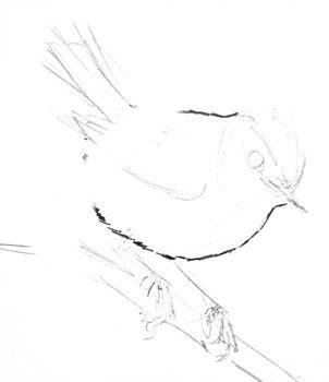Рисуем королька
