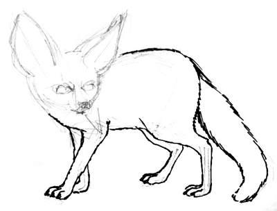 Рисуем лисичку фенека
