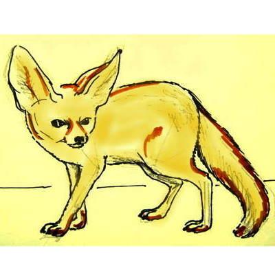 Цветной рисунок Фенек