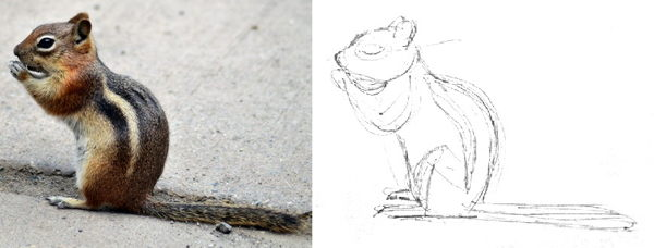 Как нарисовать бурундука