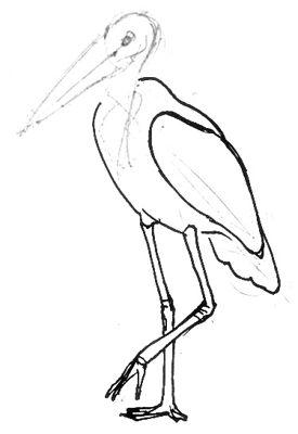 Урок рисования Марабу