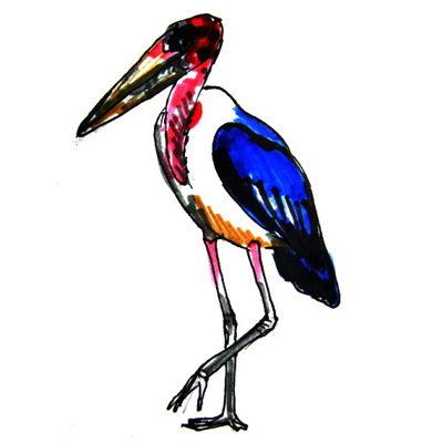 Рисунок Марабу -1